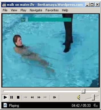 beritamaya_di-antara-dua-plexiglass