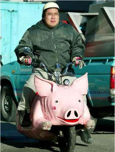 pig_bike