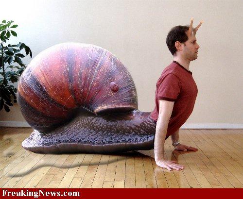 Snail-Yoga--34978